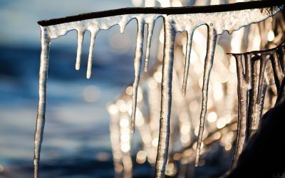 Surviving Your First Winter in Boston, MA – Tips For Warmth